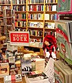 Sleeping at the bookshop crop.jpg