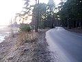 Slokas iela - panoramio (33).jpg