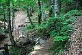 Smolarski vodopad 8.JPG