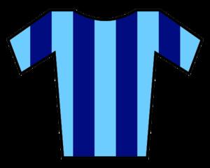 English: Sky blue and blue striped t-shirt Ita...