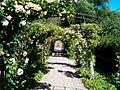 Sofiero slott Rosenträdgården.jpg