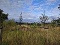 Solarpark-Seelow-Gusow.jpg