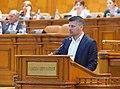 Sorin Moldovan Plen.jpg