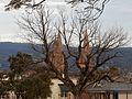 Spires Through the Trees (19407707695).jpg