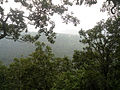Sri Venkateswara National Park Tirumala Hills 07.JPG