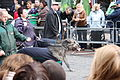 St Patricks Day Parade, Downpatrick, March 2010 (21).JPG