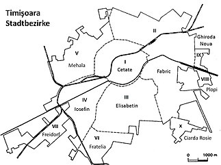 Timișoara Wikipedia