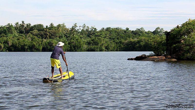 File:Standup Paddle - Madu Ganga lake- Srilanka - Kumaran.jpg