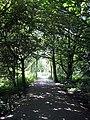 Stanley Marsh Nature Reserve - geograph.org.uk - 1349353.jpg