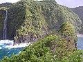 Starr-050405-5919-Schinus terebinthifolius-habit and waterfall-Keopuka-Maui (24716878596).jpg