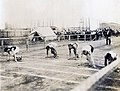 Start of the final heat in the 100 yard handicap race at the 1904 Olympics.jpg