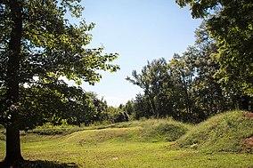 Staunton River Battlefield State Park.jpg