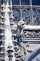 Stephansdom Vienna gargoyle 09.jpg