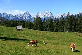 Steyrsbergerreith Totes Gebirge 20200920a.jpg