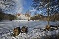 Stift Viktring Ost-Ansicht mit Parkteich 16012015 165.jpg