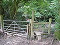 Stile into Caswell Wood - geograph.org.uk - 507813.jpg