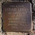 Stolperstein Antonie Lerner in Uelzen.jpg