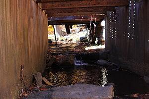 Stone Run (Bowman Creek) - Stone Run looking upstream as it flows under a bridge.