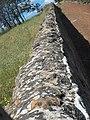 Stone wall Ross 20201113-031.jpg