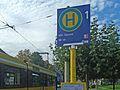 Straßenbahn an der Bushaltestelle.jpg