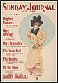Sunday Journal, New York, brighter features than any other Sunday newspaper ... - Archie Gunn. LCCN2014649609.jpg
