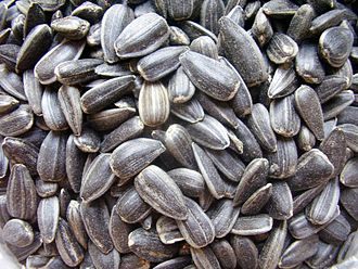 Grain - Sunflower seeds