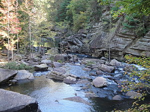 Tallulah River - Tallulah River at the bottom of the Tallulah Gorge