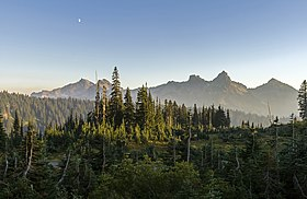 Tatoosh Range WA MRNP1.jpg