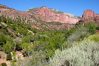 Horse Ranch Mountain - Horse Ranch Mountain as seen from the Taylor Creek area