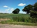 Temple Farm - South side - panoramio (3).jpg