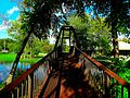 Tenney Park - Steel Pedestrian Bridge - panoramio.jpg