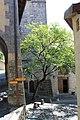 Terrasses de Lavaux - panoramio (13).jpg