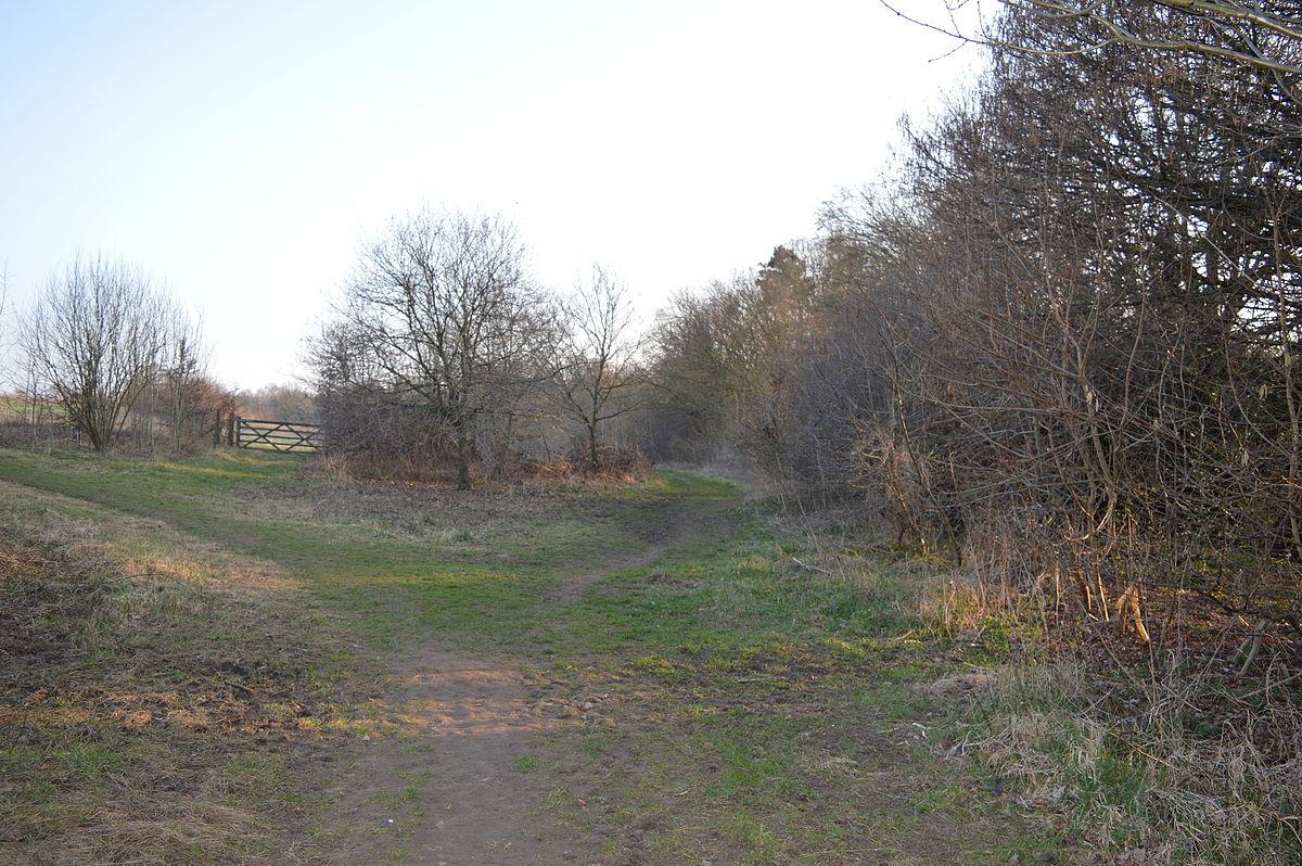 Landscape Welwyn Garden City : The commons welwyn garden city wikipedia