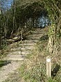 The Steps at Thistle Hill - geograph.org.uk - 369307.jpg