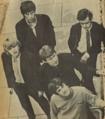 The Yardbirds in 1965.png