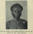 The races of man, figure 124 (IA deniofmanoutlinraces00rich).png