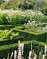 The white garden - geograph.org.uk - 301085.jpg