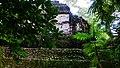 Tikal National Park-45.jpg