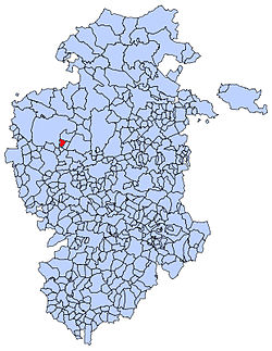 Municipal location of Tobar in Burgos province