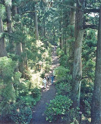 Kaidō - Section of Tōkaidō near Hakone