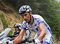 Tour de France 2012, casar met veelzeggende blik (14683245009).jpg