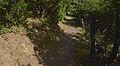 Trail in Vieussan, Hérault 02.jpg