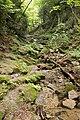 Trail of Mt.Futatsuya 05.jpg