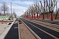Travaux pour la 3ème ligne de tramway à Saint-Étienne.jpg