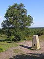 Triangulation pillar on Stagbury Hill, Furzley Common - geograph.org.uk - 462021.jpg
