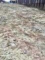 Trias-coloured-claytill-Valby.jpg