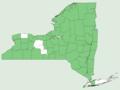 Trillium erectum NY-dist-map.png