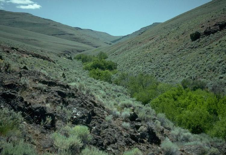 Trout Creek in southeastern Oregon