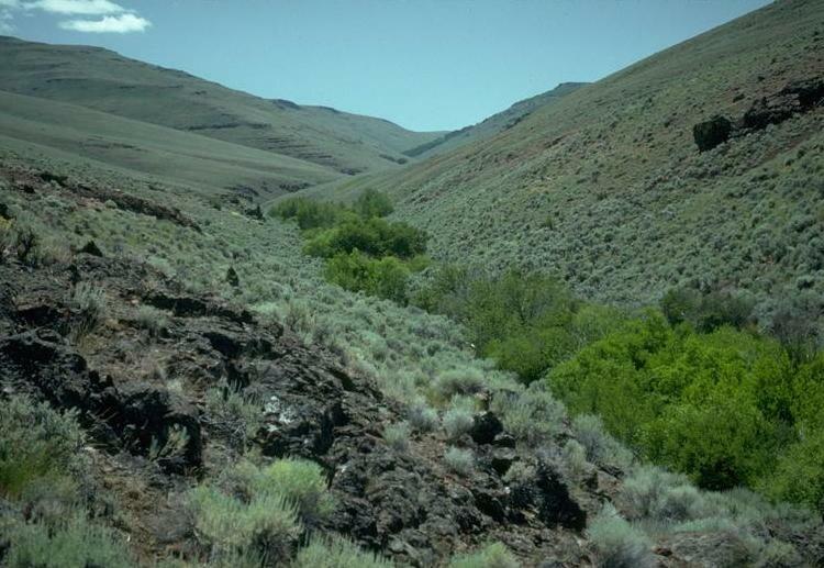Trout Creek in southeastern Oregon