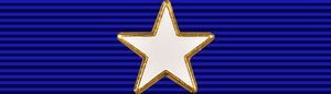 Texas Medal of Valor - Image: USA TX Lone Star Medal of Valor
